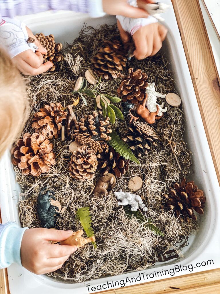 woodland sensory bin idea