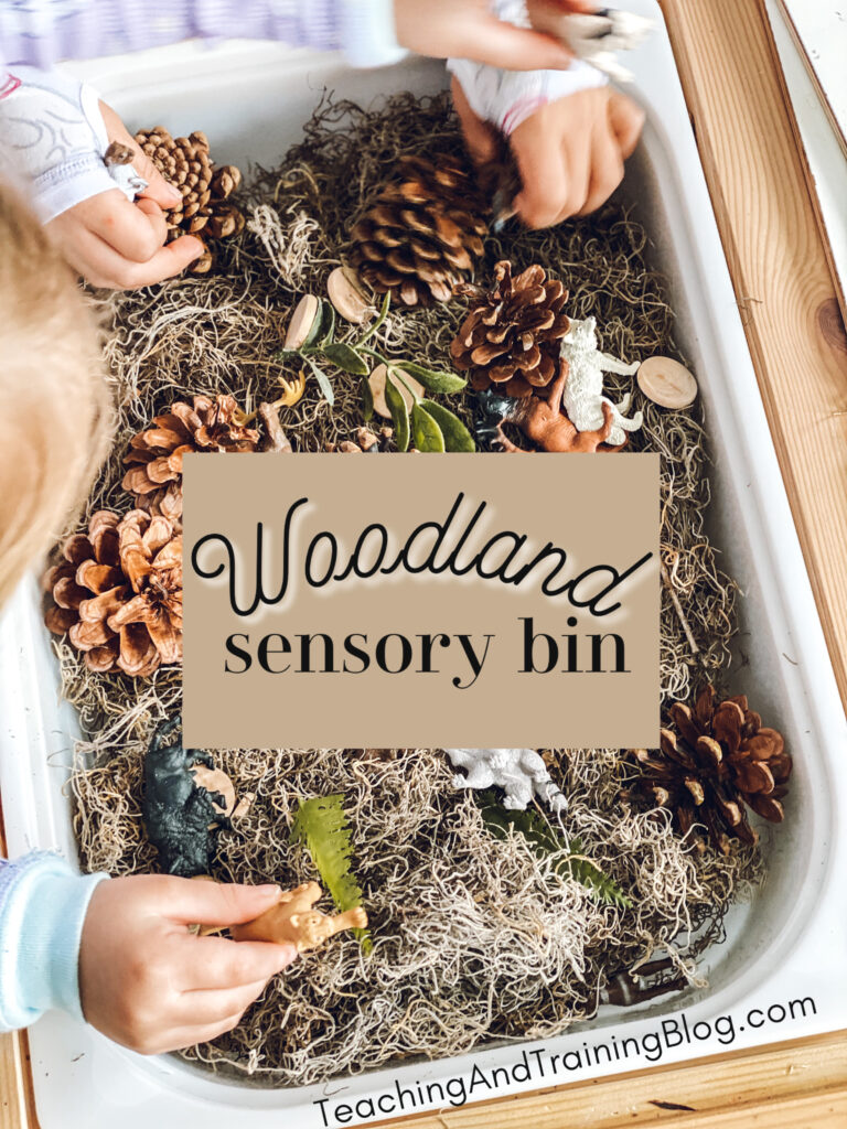 Use these simple materials to make a cute woodland sensory bin for little hands to explore.